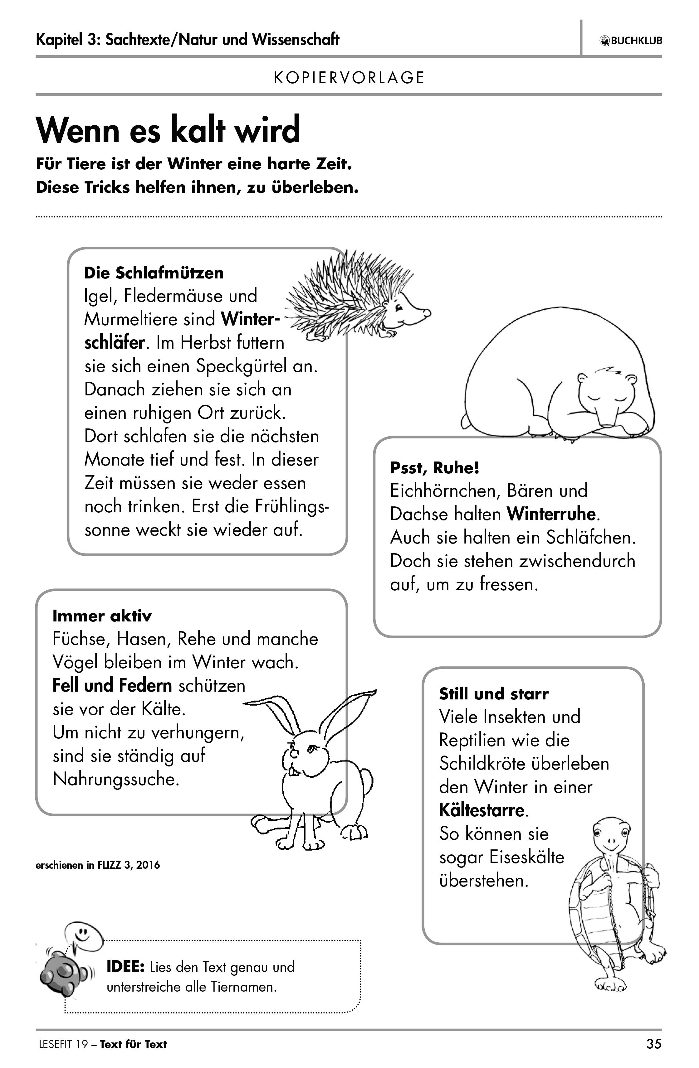 Buchklub - LESEFIT-Übungshefte